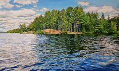 Acrylic on Gallery Canvas Lake Opeongo, Algonquin Park Landscape Paintings, Landscapes, Oil Paintings, Algonquin Park, Anna, Acrylic Painting Techniques, Amazing Paintings, Canadian Artists, Canvas Art