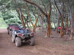 Riding ATVs through Waipio Valley on the Big Island: http://travelblog.viator.com/big-island-atv-tour-through-waipio-valley/