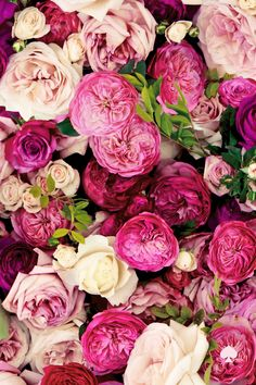 Gorgeous old English roses. Kate Spade: Everything is Coming up Roses | La Beℓℓe ℳystère