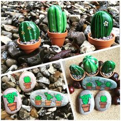JanniC...A variety of cool cactus plants painted on stone!