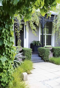 First impressions count, so when it comes to upping your home's kerb appeal, why not grow a lush, green, front garden? Here's 18 ideas to start with. Australian Plants, Australian Garden, Australian Homes, Small Front Gardens, Back Gardens, Urban Garden Design, Kerb Appeal, Garden Inspiration, Garden Ideas