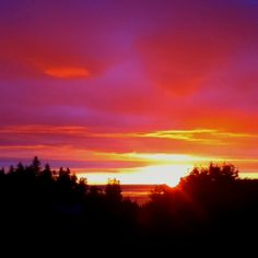 Kodiak Sunrise