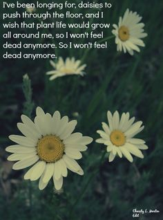 """""""I've been longing for daisies to push through the floor, and I wish that plant life would grow all around me, so I won't feel dead anymore. So I won't feel dead anymore.""""- Plant Life by Owl City"""