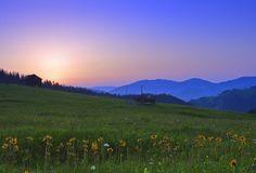 Landscape Of Bucovina Romania