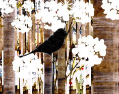 """Bird Black Perched In White Blooms / Molly, 11""""X14""""  (Also available in 8""""X10"""", on separate listing.)  Molly just moved into a South Eastern facing, 2nd branch in a new seedling. It's small but it's perfect for a young ladie's first place. Here she perches after a long day, surrounded by the fresh flowers that grow so close to her branch and were the main reason she took this place."""