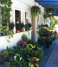 A.R. Pontius Flower Shop, in downtown Harbor Springs,