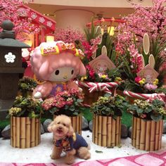 Cute Anime Profile Pictures, Gal Pal, Sanrio, Kawaii Anime, Sheep, Piano, Teddy Bear, Pianos, Teddy Bears