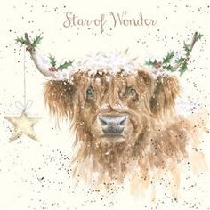 Wrendale Designs Christmas Card Star of Wonder Highland Cow & Holly Snow for sale online Christmas Animals, Christmas Art, Christmas Greetings, Xmas, Animal Paintings, Animal Drawings, Watercolor Illustration, Watercolor Art, Sheep Illustration