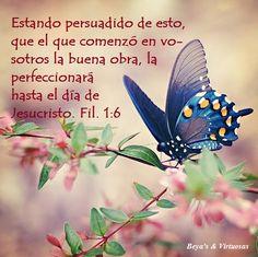 Filipenses 1:6 estando persuadido de esto, que el que comenzó en vosotros la buena obra, la perfeccionará hasta el día de Jesucristo;♔