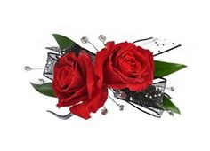 Black & Red Rose Ring Corsage by Something New Florist in Canfield, Ohio #somethingnew #somethingnewflorist #ohio #youngstown #canfield #boardman #floral #florals #florist #nosegay #bouquet #corsage #roses  #homecoming #hoco #hoco15 #prom