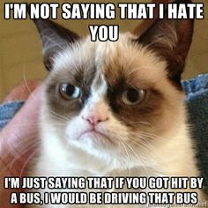 "Grumpy Cat - ""I'm not saying that I hate you. I'm just saying that if you got hit by a bus, I would be driving that bus."""