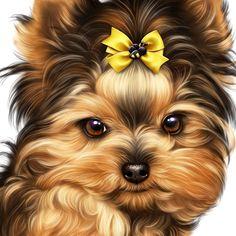Hey lil 😍😍😍mama #yorkshireterrier Roztomilí Pejsci, Roztomilá Štěňata, Pěkné Kresby, Jednoduché Kresby, Zvířecí Miláčci, Kočky, Psi A Kočky, Medvídci Pandové, Draw
