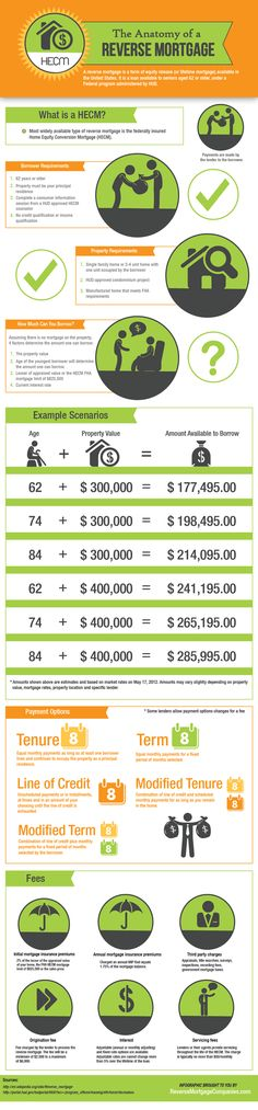 Reverse mortgage infographic