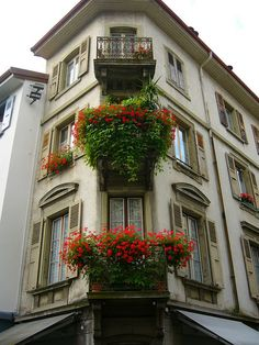 flower box and balcony