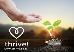 "There's a new, beautiful, awesome and informative website on the block that's filled with innovative sourced products and articles that encourage green living choices to help SA families thrive! Of course, they are also appropriately called thrive!  ""It began 9 years ago when Mia Blom and Jacqueline Baldwin were mamas with new-borns, desperate for a bit of …"