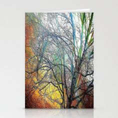 Blank Note Card Fine Art Photography Blank by earthmothermosaics, $16.00
