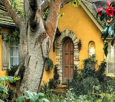 *Yellow cottage
