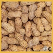Roasted/Salted Peanuts In The Shell - 25 Pound Bulk Case N0703