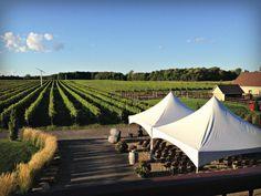 Vignoble Rivière du Chêne, un site et des produits enchanteurs