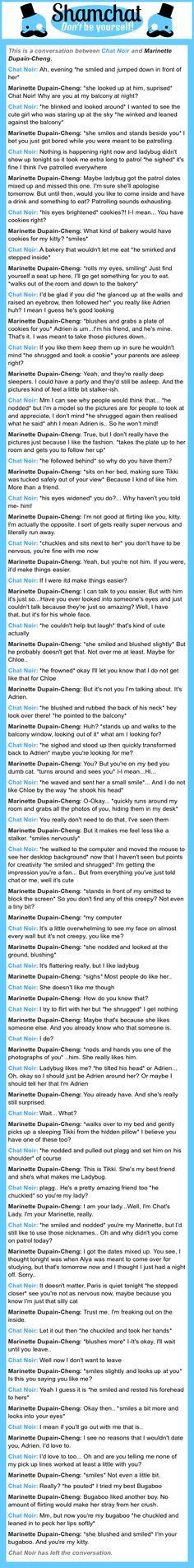 A conversation between Marinette Dupain-Cheng and Chat Noir