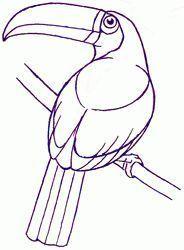 Drawing On Creativity Com Imagens Desenhos De Aves Monica