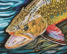"""""""Electric"""" Colored pencil drawing of a Brook Trout by Travis J.Sylvester.  Reference photo courtesy of """"Steve Stoner"""""""