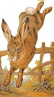 Jumping Easter rabbit from England