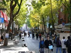 Tips for Study Abroad in Korea #Travel #Tips #How to