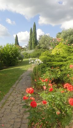 The beautiful grounds at Fattoria Montalbano in Tuscany.