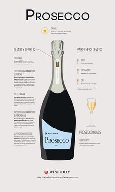 The Prosecco Wine Guide || Learn more about this fascinating sparkler including how to choose Prosecco, the different styles, the main winemaking region and what foods to pair with it. #winepairing #WineGuide