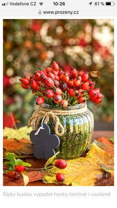 Handmade Christmas Decorations, Holiday Decor, Non Floral Centerpieces, Christmas Art, Christmas Ornaments, Egg Carton Crafts, Deco Nature, Fruit Decorations, Little Gardens