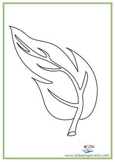 dibujos para imprimir y colorear, educación infantil y primaria, hoja, naturaleza