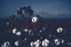 Fabric Cupro – VYAYAMA