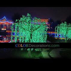 Cd Lt107 Artificial Decorative Led Mushroom Tree Christmas Holiday Lighting Trees Light Pinterest Holidays Lighted And