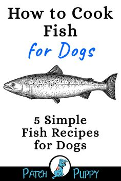 Learn How to Cook Fish for Dogs with these 5 Simple Fish Recipes for Dogs!
