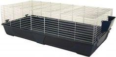 Dieses schöne Nagerheim Rabbit 140 bietet viel Platz zum toben und spielen für Meerschweinchen, Zwergkaninchen oder andere kleine Nager. Er wird Ihren Tieren garantiert viel Freude bereiten.