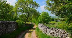 Country lane near Monyash, Peak District Trekking Holidays, British Things, Travel Uk, Peak District, Derbyshire, How Beautiful, Beautiful Landscapes, Wales, Britain