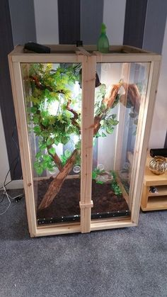 Here is an arboreal vivarium made for one of our employees Chameleon. We have made this using solid wood framing with a polycarbonate lining inside. The size is 80 x 70 x If interested in buying one contact us for a bespoke quote. Chameleon Enclosure, Snake Enclosure, Chameleon Pet, Reptile Habitat, Reptile Room, Reptile Cage, Lizard Cage, Snake Cages, Gecko Cage
