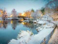 A snowy Central Park - Gapstow Bridge Central Park, Basque Country, Winter Beauty, United States Travel, Twitter, Outdoor, Image, Bridge, New York City