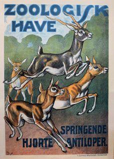 Historiske plakater - København Zoo