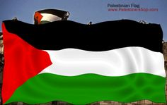 Palestina Freedom, Flag, Movies, Movie Posters, Palestine, Flags, Liberty, Political Freedom, Films