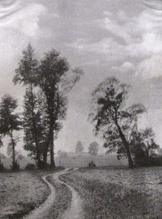 Die Kunst in der Photographie : 1901 Photographer: M. Horny Title: Erlen