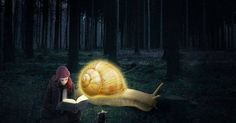 Just Pinned to Forests: A reader lives a thousand lives before he dies. The man who never reads lives only one. George RR Martin #reading https://t.co/PYgrz7w3T6 http://ift.tt/2kItt5g