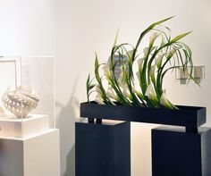 """""""Art in Bloom,"""" at the Museum of Art and Archaeology at the Univ. of Missouri/ March 2013"""