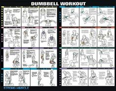 Total body dumbell workout...