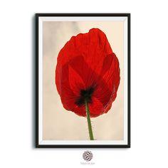 Poppy Print,Instant Art,Poppy Art Print,Modern Minimalist Poster, Printable Wall Decor,Poppy Wall Art Floral Art Print,Nature Wall Print