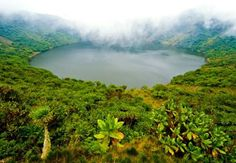 Crater Lake, Volcanoes National Park, Rwanda - Photo by RDB