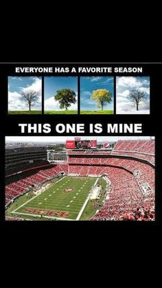 My Favorite Season Nfl 49ers, 49ers Fans, Nfl Football Teams, Football Love, Football Is Life, Football Season, Niners Girl, 49ers Nation, Forty Niners