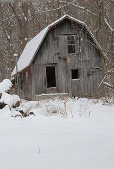 Winter Snow :)
