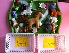 Many Sorting Opposites activities (Montessori) Preschool At Home, Preschool Science, Preschool Classroom, Preschool Learning, Classroom Activities, Preschool Crafts, Learning Activities, Kids Learning, Crafts For Kids